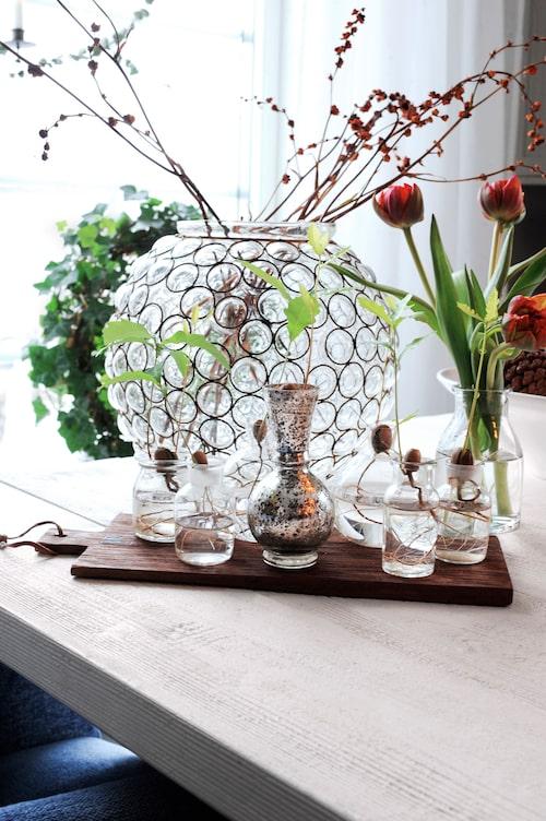 På matbordet vas från Artilleriet, ekollonvaser från Svenskt tenn och bricka i trä från Haga hem.