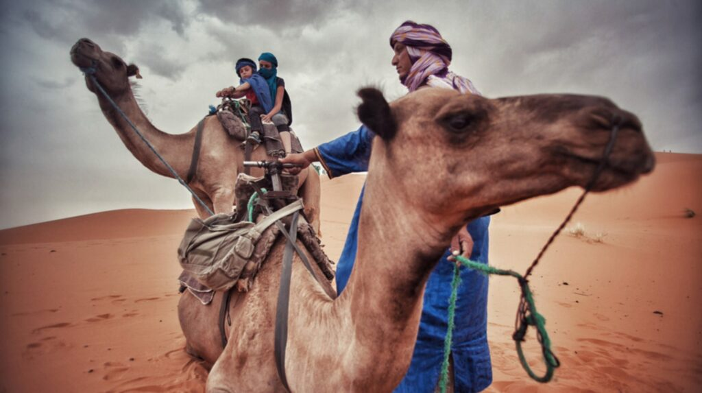 <p>Du får INTE rida kamel på motorvägen i Nevada.</p>