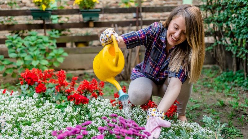 Kanske förorenar de i rabatterna och krafsar upp plantor, ta då del av 9 enkla tips nedan för att slippa problemet.