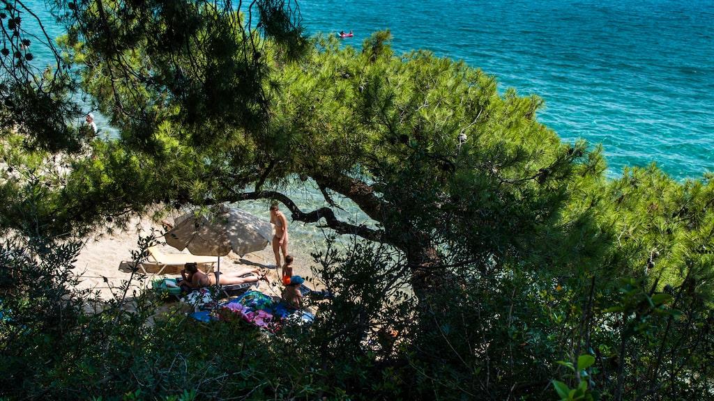Vid Lagomandra beach på Sithoniaudden av Halkidiki hittar vi denna lilla undangömda badvik med ett litet café högst uppe på klippan.