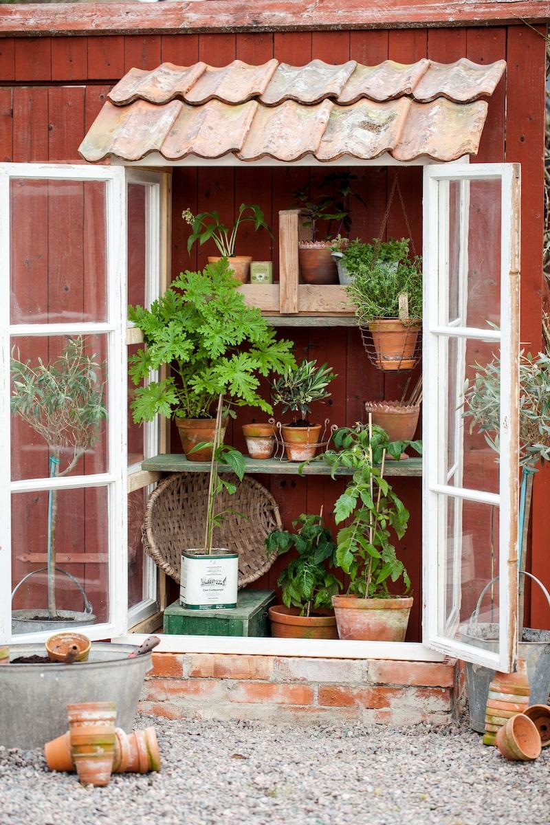 Med gamla vackra, spröjsade fönster fixar du en lyxig växthuskänsla.