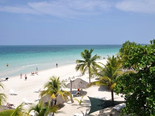 Jamaica brukar föra tankarna till paradiset – men också där lurar faror.