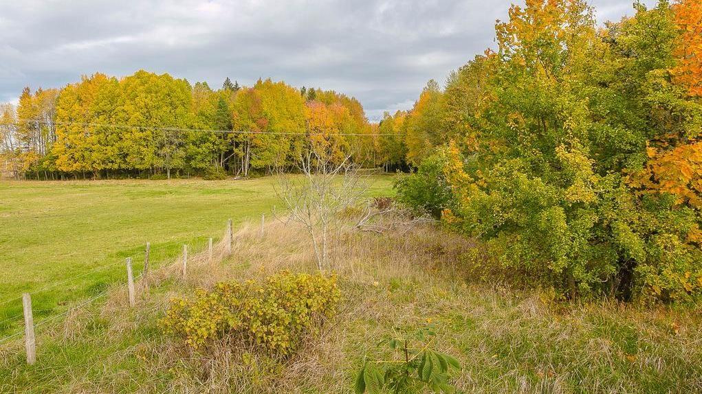 Till gården hör en värdefull mark om 53 030 kvadratmeter med både skog och betesmark.