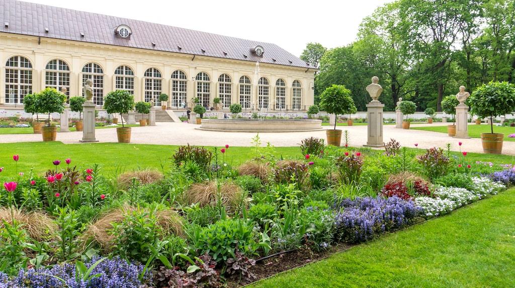 Orangeriet i Park Lazienki är ett av flera smultronställen med goda luncher i weekendstaden.