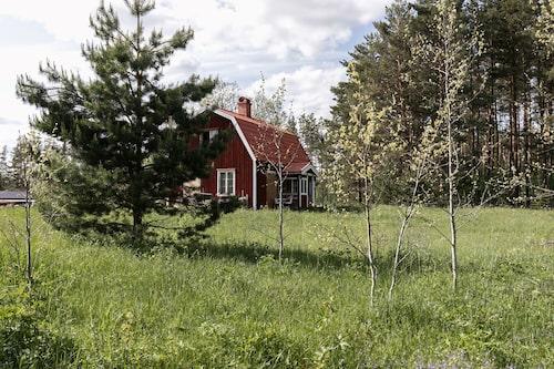 Det rödmålade, charmerande huset har stor potential att bli någons drömhem.