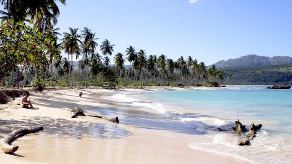 Vit sand, turkost vatten och palmerna vajar för vinden.