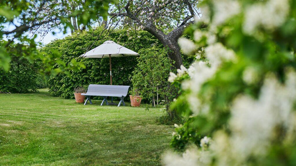 """Trädgården erbjuder många olika små """"lounger"""" att hänga i."""
