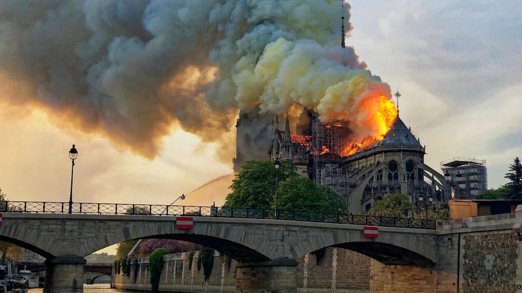 Notre Dame - återställt om fem år?