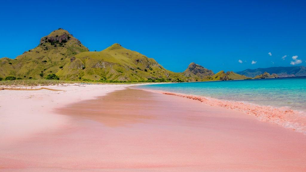 Pink Beach som den borde se ut.