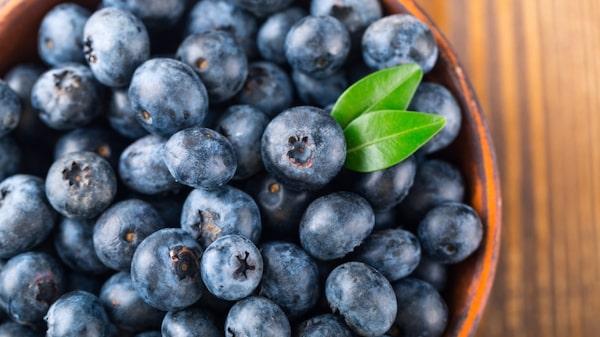 Antioxidanter finns i blåbär!