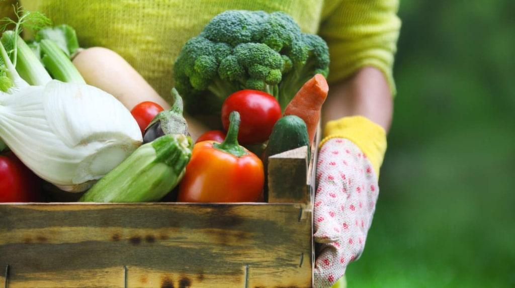 <p>Att grönsaker är bra för oss – det vet vi. Men vilka är de allra bästa? Nu har Livsmedelsverket gjort en topplista.</p>