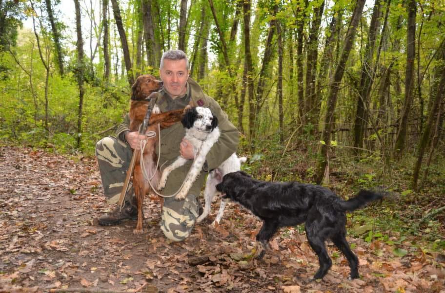 Tryffeljägaren Gianpiero Montanelli och hans tre hundar på jakt efter lyxig svamp. Förr användes svin som också har bra luktsinne, men de är svårdresserade och glupska.