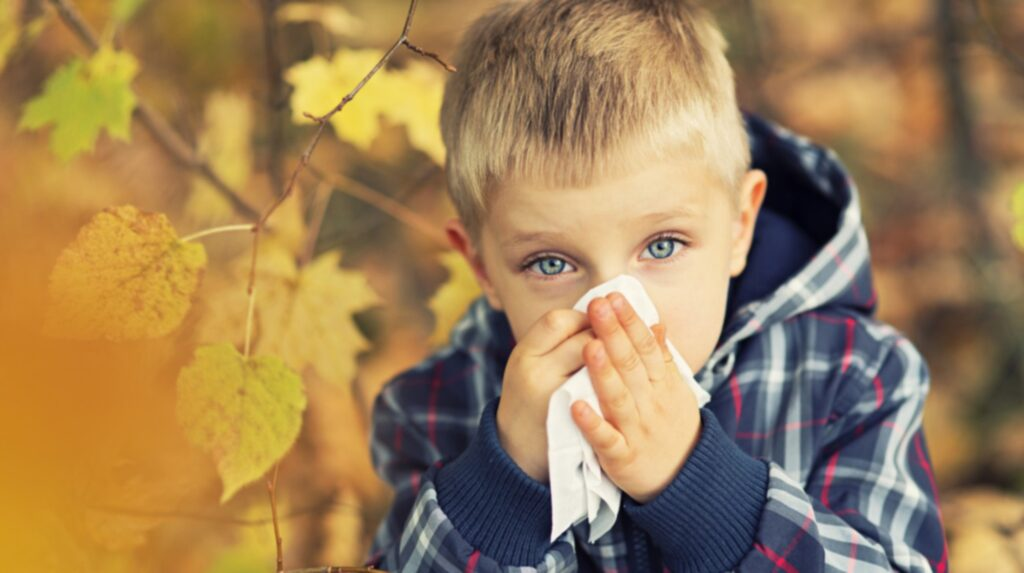<p>Höstbarn har exempelvis en ökad risk för allergier, astma och eksem.</p>